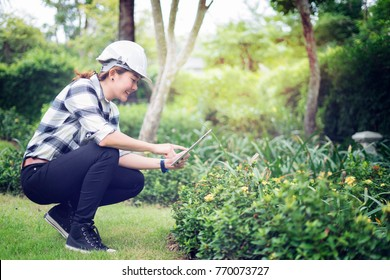 Environmental engineer wearing white hard hat helmet and taking plant photo while working digital tablets for social networks.