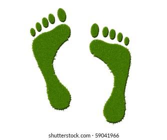 Environmental footprint rendered with a high resolution grass texture