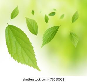 Environmental image