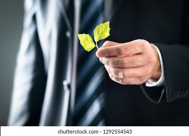 Environmental lawyer or politician with nature and environment friendly values. Business man in suit holding green leafs. Sustainable development, climate change, global warming and conservation.