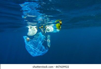 Environmental pollution of plastic in the ocean