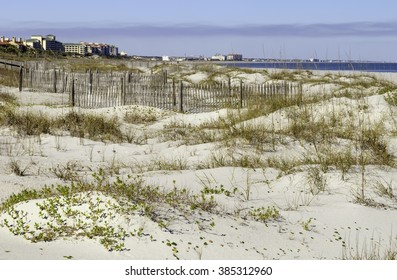Environmental study in coexistence: Fragile dune environment, with vegetation and sand fences, some distance from beach hotels and condominiums along the Atlantic coastline of northeastern Florida