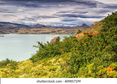 Epic beauty of the landscape - the National Park Torres del Paine in southern Chile. Lago Nordernskjold and mountains in the background. South America