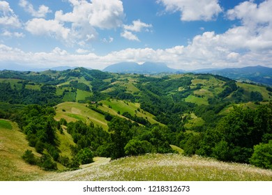 Epic landscape in green hills and mountains of rural Transylvania, Romania, on a sunny day of summer, with flowers. Ecotourism