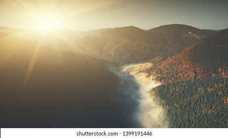 Epic Mountain Slope Surface Dawn Scene Aerial View. Autumn Highland Coniferous Forestry Scenery Overview. Thick Fog Covered Hill Bottom Landscape Natural Environment Drone Flight