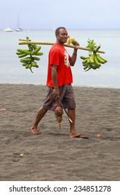 EPI,VANUATU-OCTOBER 4, 2014: Villager back from the garden after pick bananas on October 4, in Lamen Bay-Vanuatu.
