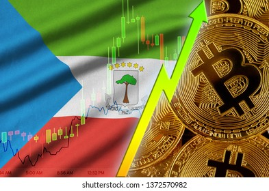 Equatorial Guinea flag and cryptocurrency growing trend with many golden bitcoins
