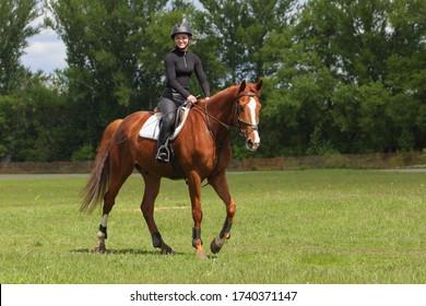 Equestrian model girl riding sportive dressage horse in summer fields