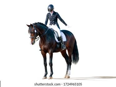 Equestrian sport - dressage rider portrait isolated on white
