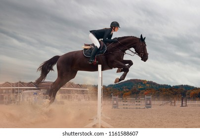 Equestrian sport - a young girl is riding a horse