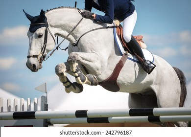 Equestrian Sports, Horse jumping, Show Jumping, Horse Riding themed photo