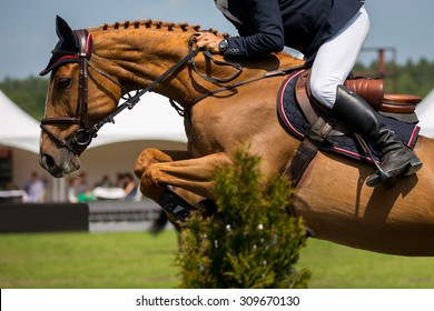 Equestrian Sports, Horse Jumping, Show Jumping competition.