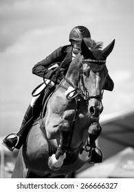 Equestrian Sports, SHow Jumping event themed photo.
