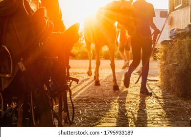 Equestrian tools stored in a stable at evening at the end of the eequestrian training on blurred background with sunset backlight. Mystical atmofphere