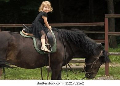 Equine therapy, recreation concept. Child sit in rider saddle on animal back. Girl ride on horse on summer day. Friend, companion, friendship. Sport activity entertainment. riding school