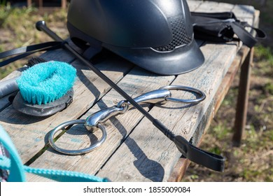 Equipment for horse care and riding: brushes of various sizes and purposes, bridle, whip, helmet, bandages, bit