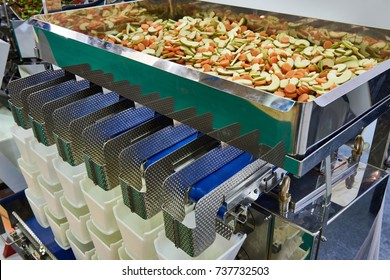 Equipment for sorting and packaging of food products in the factory