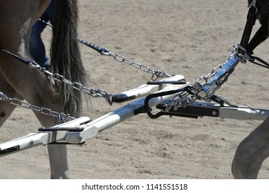 Equipment used with draft horses.