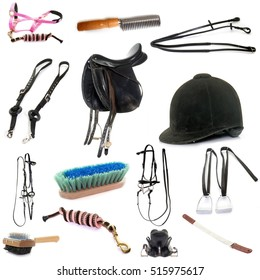 equipments of horse riding in front of white background