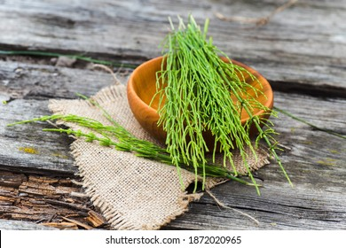 Equisetum arvense, field horsetail or common horsetail Medicinal plants collected for the preparation of traditional medicine - Shutterstock ID 1872020965