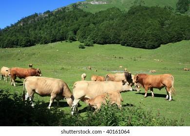 Era Artiga de Lin, Pyrenees, Spain