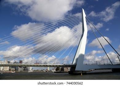 Erasmus Bridge (Erasmusbrug) , emblem of and symbol for modern Rotterdam, the Netherlands with city panorama