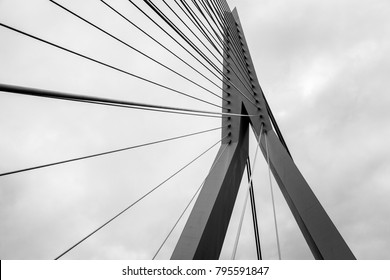 The Erasmus Bridge lines