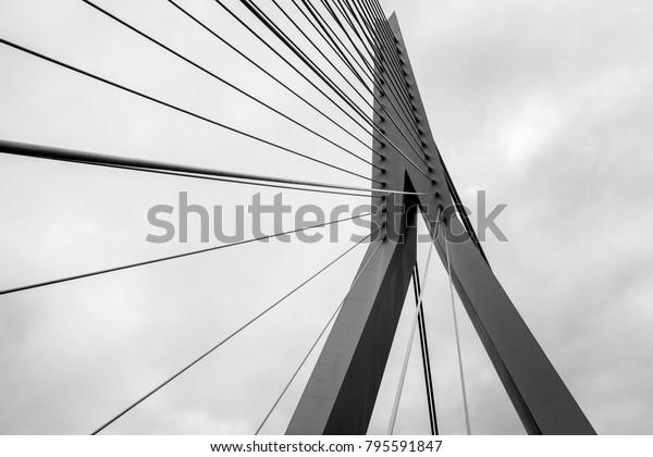 The Erasmus Bridge lines