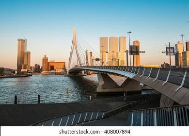 Erasmus bridge Rotterdam , the Netherlands