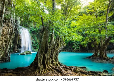 Erawan waterfall environment with big tree and emerald water in Kanchanaburi, Thailand