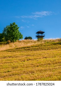 Erbenova vyhlidka - The top of the Erben's lookout tower protrudes above the horizon with a semi-dry meadow