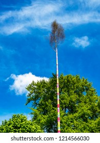 Erected maypole, Maibaum in June, Herresbach Germany