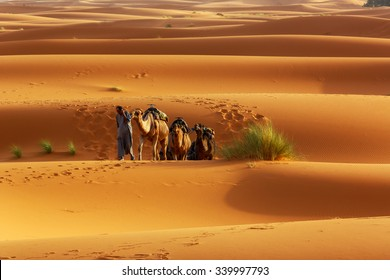 ERFOUD,MOROCCO - July 30, 2015 : Unidentified camel rider rides caravan while he speaks on the mobile phone in the middle of the dessert.