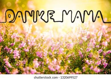 Erica Flower Field, Calligraphy Danke Mama Means Thanks Mom