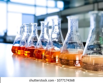 The Erlenmeyer or Conical flask on bench laboratory, with gradient solvent for analysis concentration range of iron show the orange color compound, detect with UV-spectrophotometer in waste water.