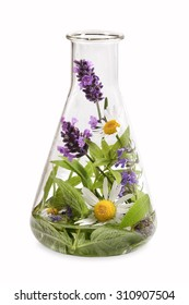 Erlenmeyer flask with medicinal herbs