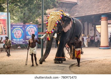 Ernakulam, India - January 24, 2016: Man prepare and decorate elephants for traditional hindu festival at Siva temple in Ernakulam. Temple festivals are held in Kerala from December to March