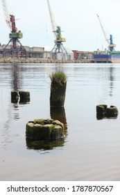 Eroded pier piles stand outside the water. Cargo cranes stand in the background.