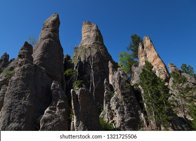 Eroded rock formations and trees stand tall against a clear blue spring sky in Custer State Park, South Dakota.