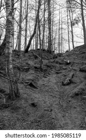 An eroded slope leading down to the bottom of Frostbrunnsdalen.