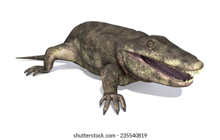The Eryops was a prehistoric amphibian that lived during the early Permian Period.