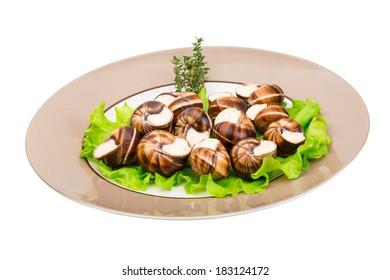 Escargot with cheese sauce