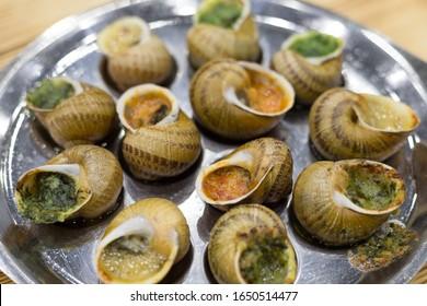 Escargots de Bourgogne - french cuisine