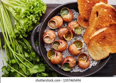 Escargots de Bourgogne - Snails with herbs butter on gray background. Salad