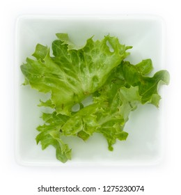 Escariol Eskariol Endive salad leaves in a white bowl