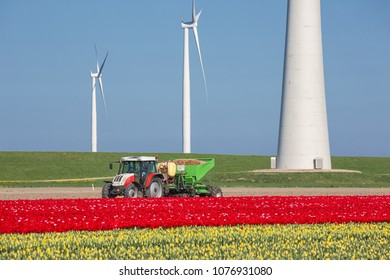Espel, The Netherlands - April 21, 2018: Dutch farmland with farmer and tractor planting potatoes between tulip fields and wind turbines