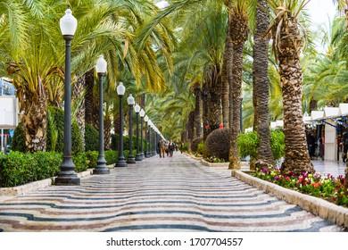 Esplanada Boulevard in the city of Alicante. Alicante province. Spain