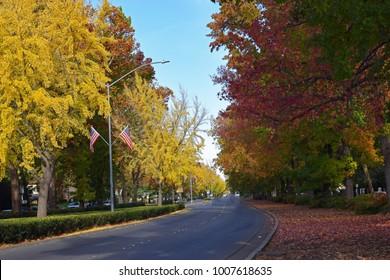 The Esplanade in the fall.  Chico, California