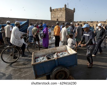 ESSAOUIRA, MOROCCO - AUGUST 02, 2013 : A fisherman wheeling his catch of seafood in the port of Essaouira. The present city of Essaouira was built during the 18th century by Mohammed III.