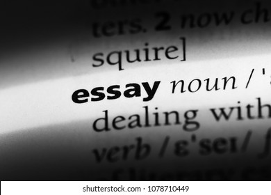 essay word in a dictionary. essay concept